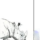 Why they matter (Rhinocerotidae) by Maree Clarkson