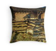 Old Settlers Cabin Throw Pillow