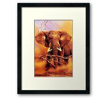 The African bush elephant (Loxodonta africana) Framed Print