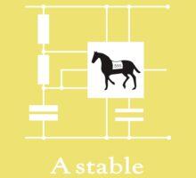 'A stable'  - Geek Slogan Tee Kids Tee