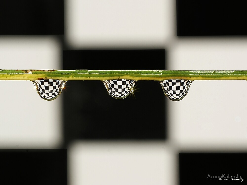 A game of chess...... by AroonKalandy