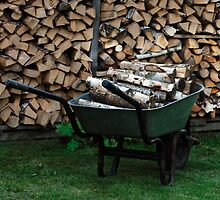 Preparation for winter time by Antanas