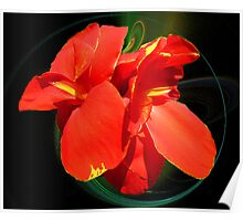 Red Floral Poster