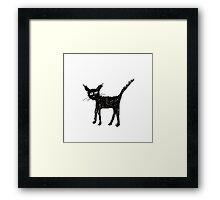 Scruffy black cat Framed Print