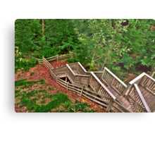 Stairway to a Mountain Forest Metal Print