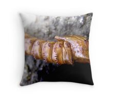 Alien Life Form Coming In Throw Pillow