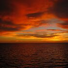 From The Charlotte Harbor Punta Gorda Florida by enyaw