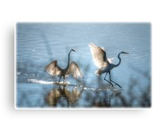 Water Ballet  Canvas Print
