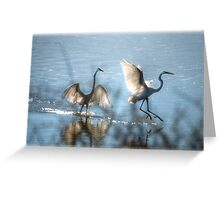 Water Ballet  Greeting Card