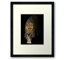 Emerging from the Shadows of Extinction! Framed Print