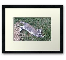 Whoops!! Framed Print