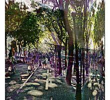 PHTO0044-PHTO0046 _PHTO0062 _GIMP Photographic Print