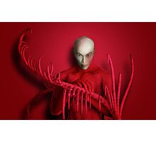The Red Touch Photographic Print