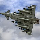 BAE Eurofighter Typhoon by Shane Ransom