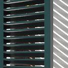 Window shutters, Den Haag by Lenka