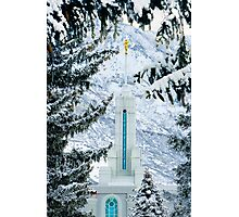 Mt. Timpanogos Temple Between the Evergreens 20x30 Photographic Print