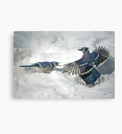 Proper Use Of A Flash Canvas Print