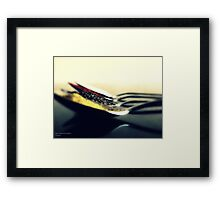 SPICE # 028 Framed Print