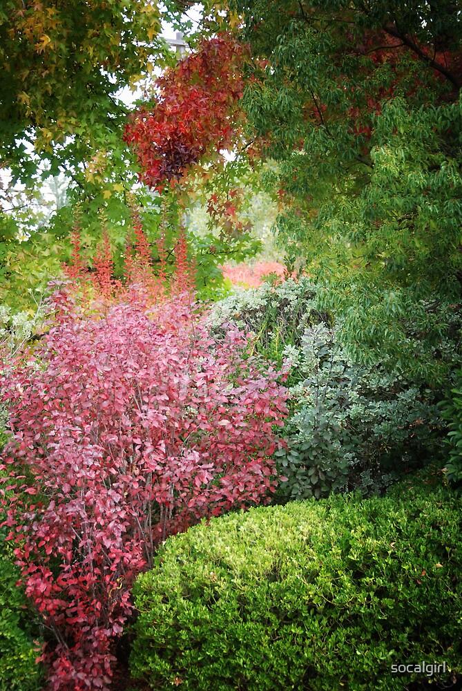 Impressionistic Garden by socalgirl