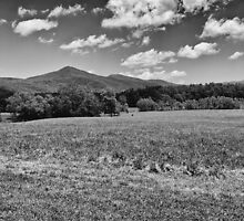 Fields and Mountains - #2 Redux by glennc70000
