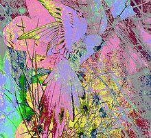 Lovely Parrot Colours. by Vitta
