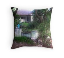 Brisbane Floods 2011 - Clean Up - Limbo vs Patience Throw Pillow