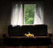 15.7.2011: When Nature Hides by Petri Volanen