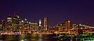 CITY LIGHTS by Yelena Rozov