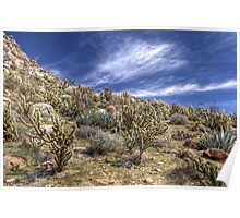 Cactus Hill Poster