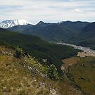 Green Again. Mount St Helens by Olga Zvereva