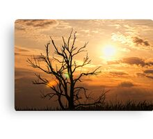 So lonely Canvas Print