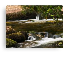 Water in Motion Canvas Print