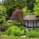 Japanese Garden by Debu55y