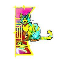 multieyed mutant feline Photographic Print
