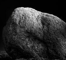 Turtle Head Rock by Bob Larson