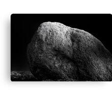 Turtle Head Rock Canvas Print