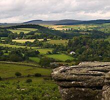 Meadow View ~ Combestone Tor by moor2sea