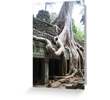 Wild roots Greeting Card
