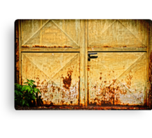 Gate with grass Canvas Print
