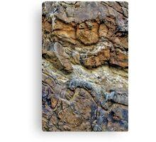 Rock Chasm III Canvas Print