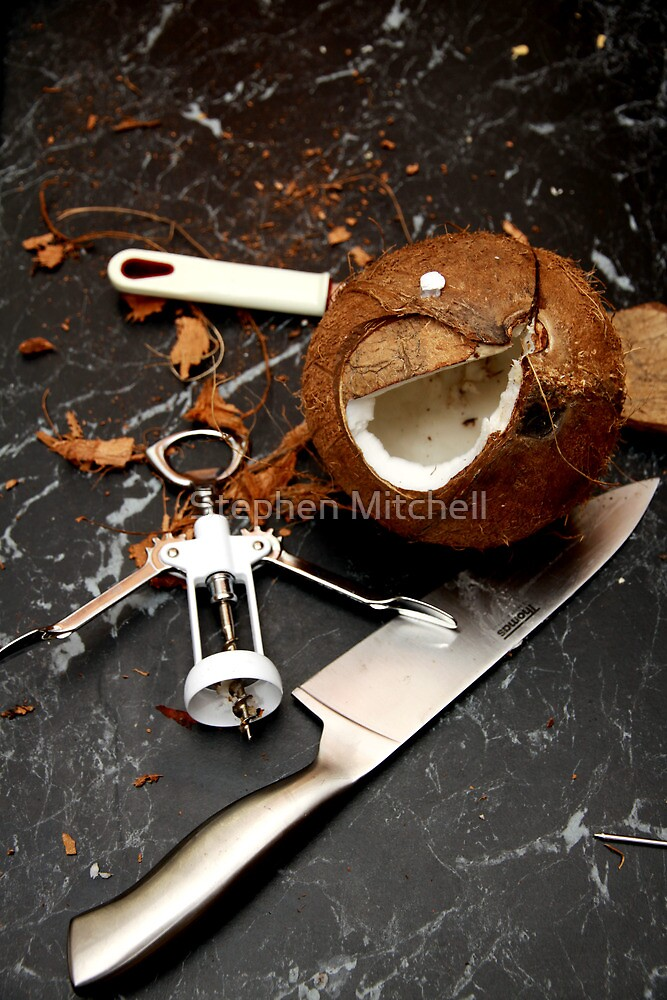 Cracked Coconut II by Stephen Mitchell