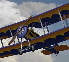 Bi-Plane Flying by Winthrop Brookhouse