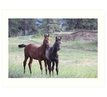 Horses on the Highway Art Print