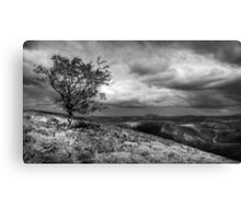 Carding mill Valley Canvas Print