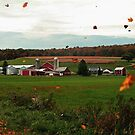 Swirling Leaves At The Farm by Geno Rugh