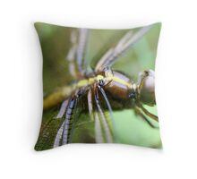 Dragon Fly  Macro Throw Pillow