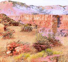 Desert History by Lenore Senior