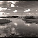 Chew Valley Lake by Paul Shellard