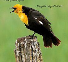 For the Birthday Boy ! by Jan Siemucha