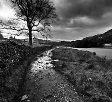 Wandering In The Lake District by Leon Ritchie